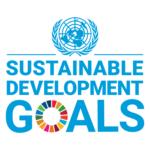 UN SDG LOGO